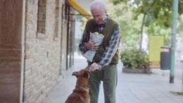 el hombre y el perro (784x495)