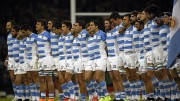 los pumas world rugby